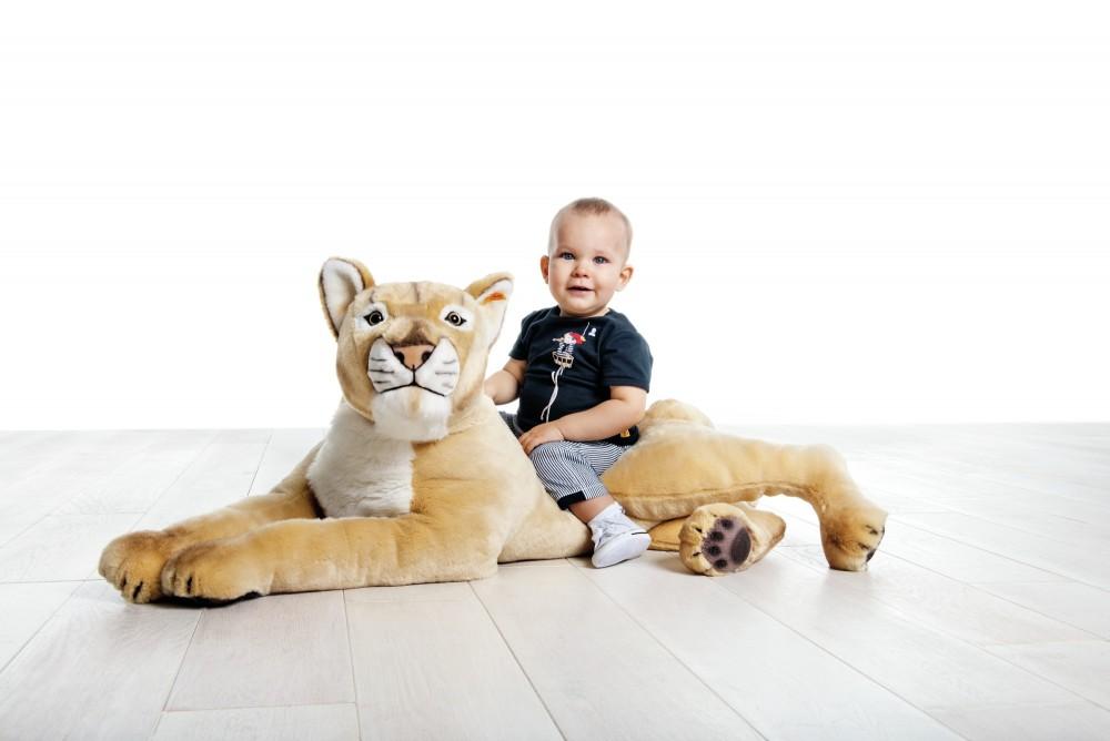 Leonie Lioness Steiff Studio Ean 075735 Fox And Lantern