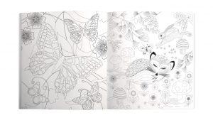 Into The Wild Colouring Book - Roger La Borde