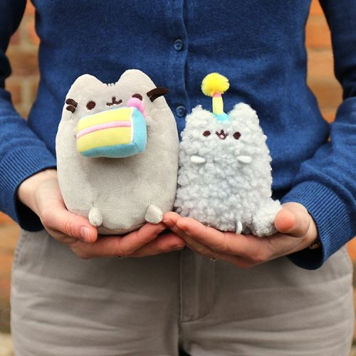 Pusheen Birthday Collectable Set