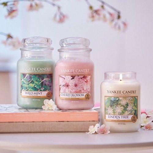 Cherry Blossom - Yankee Candle - Large Jar