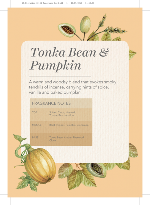 Yankee Candle Elevation collection - Tonka Bean & Pumpkin - Large 2-Wick Square Candle