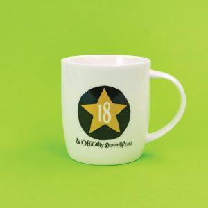 18th Birthday Milestone Mug - The Bright Side - BSHHC53